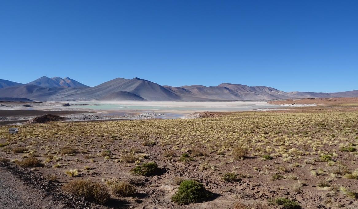 Salar del Carmen, Atacama-Wüste
