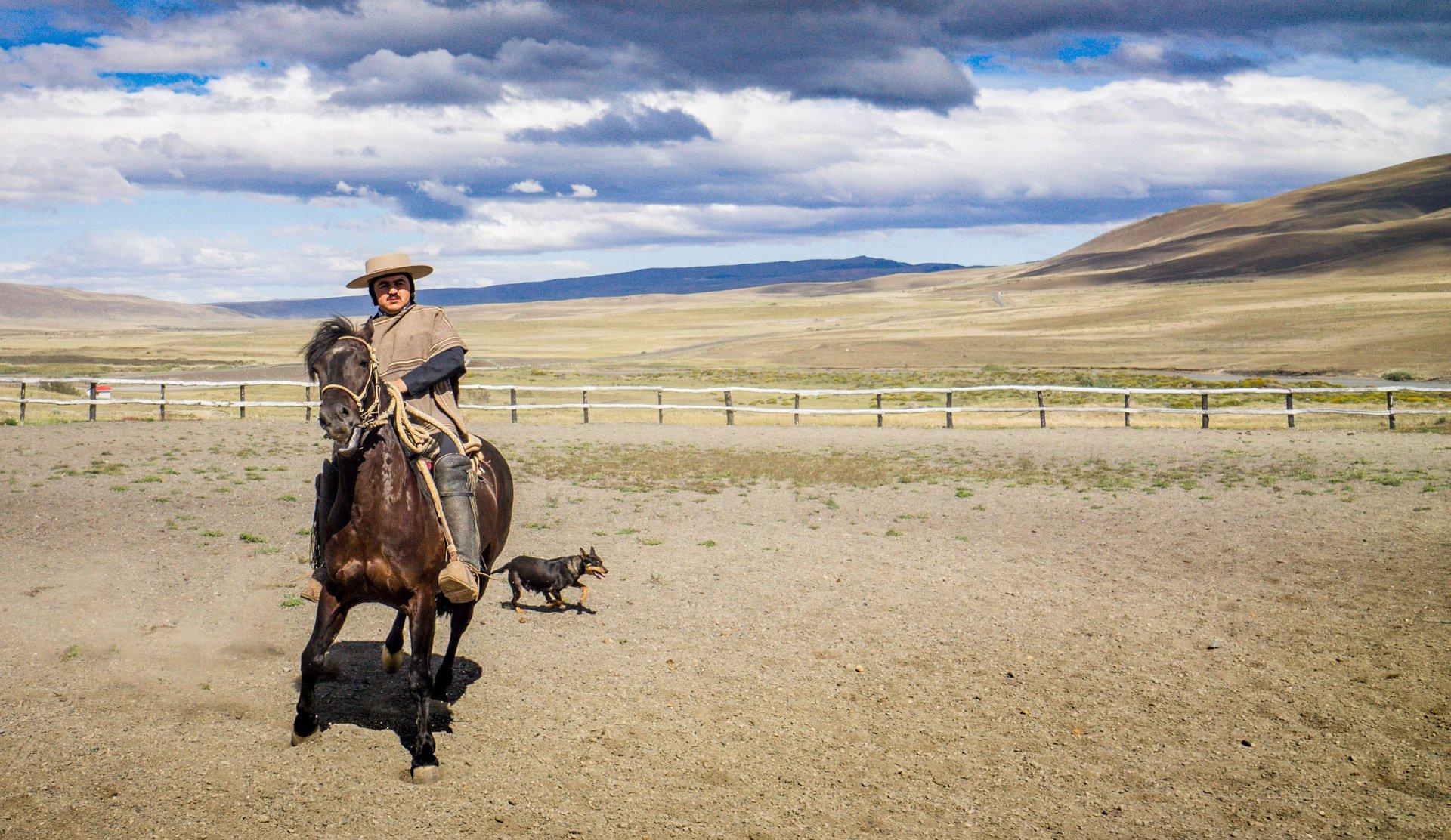 Die Viehzucht und die Arbeit mit Pferden prägt das ländliche Argentinien. Quelle: Viventura