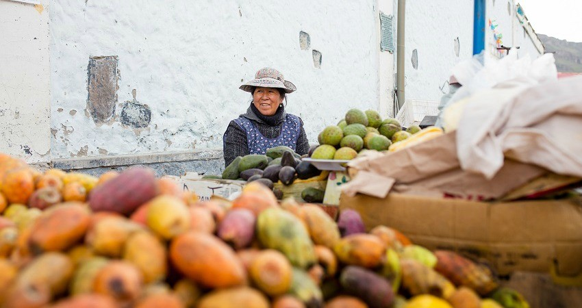 Eine Chilenin sitzt an ihrem Gemüsestand und wartet auf die nächsten Käufer. Beste Gelegenheit, die frisch gelernten Vokabeln zu testen.