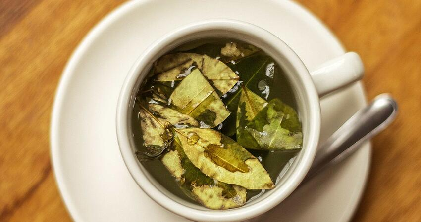 Kokatee ist in Peru ein Nationalgetränk. Der Tee wird besonders viel zum Vorbeugen gegen die Höhenkrankheit in den Anden getrunken.