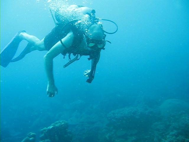 Colombia | Islas del Rosario | Buceo