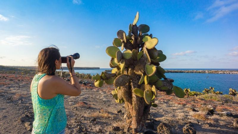 Lavaformationen, raue Felsen, paradiesische Strände und riesige Kakteen prägen das Inselbild von Galapagos.