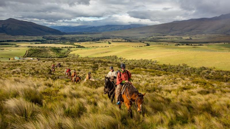 Zu Pferd geht es durch die Graslandschaften des Paramo.