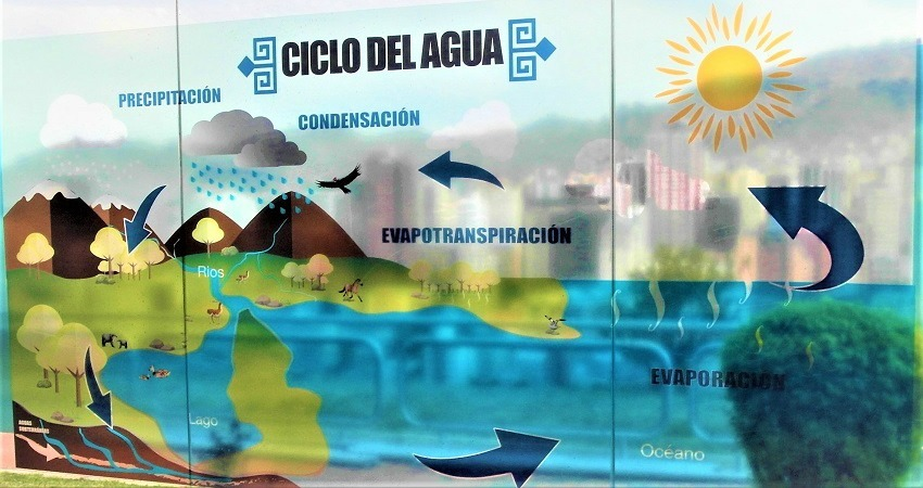 """Im WWF Projekt """"EcoLab"""" in La Paz wird an einer Grafik beschrieben, wie die natürliche Wasserzirkulation funktioniert."""