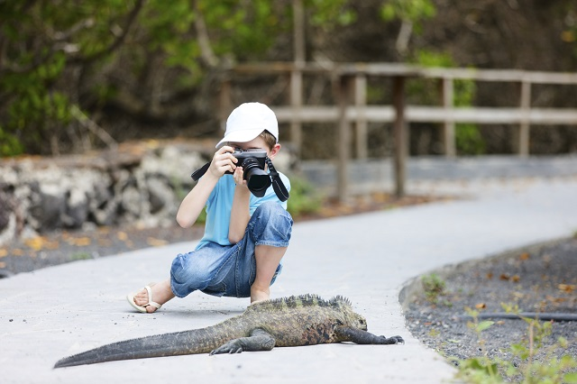 Places to go for Christmas - the best Christmas destinations: Galapagos