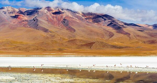 Die rote Laguna Colorada verändert je nach Licht- und Windverhältnissen sowie der Tageszeit ihre Farbe von einem sanften Rosarot bis zu einem tiefen Zinnrot.