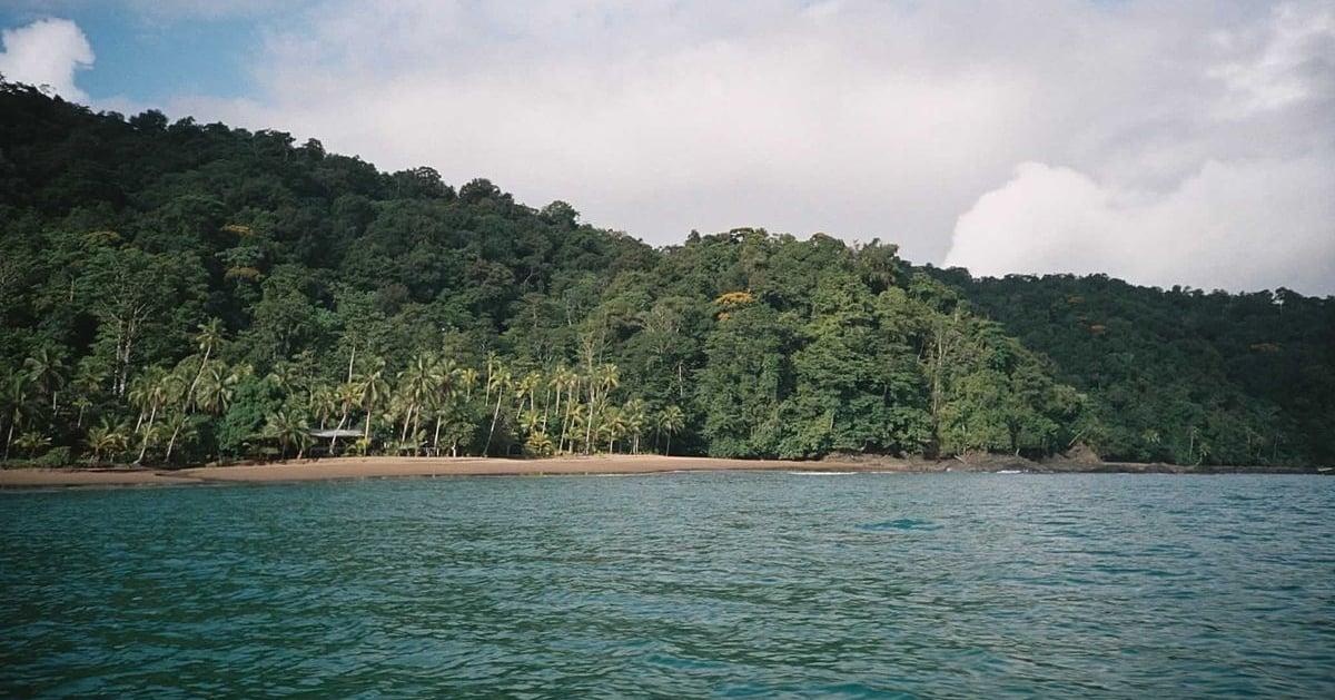 K5   Die kolumbianische Pazifikküste, hier El Choco, ist unter Reisenden noch ein Geheimtipp. Bildquelle:Wikipedia