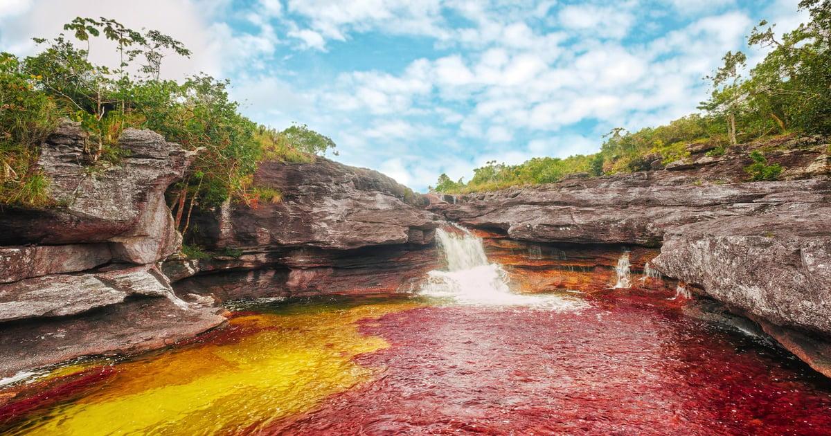 Caño Cristales sollte man am Besten zwischen Juni und Dezember besuchen.