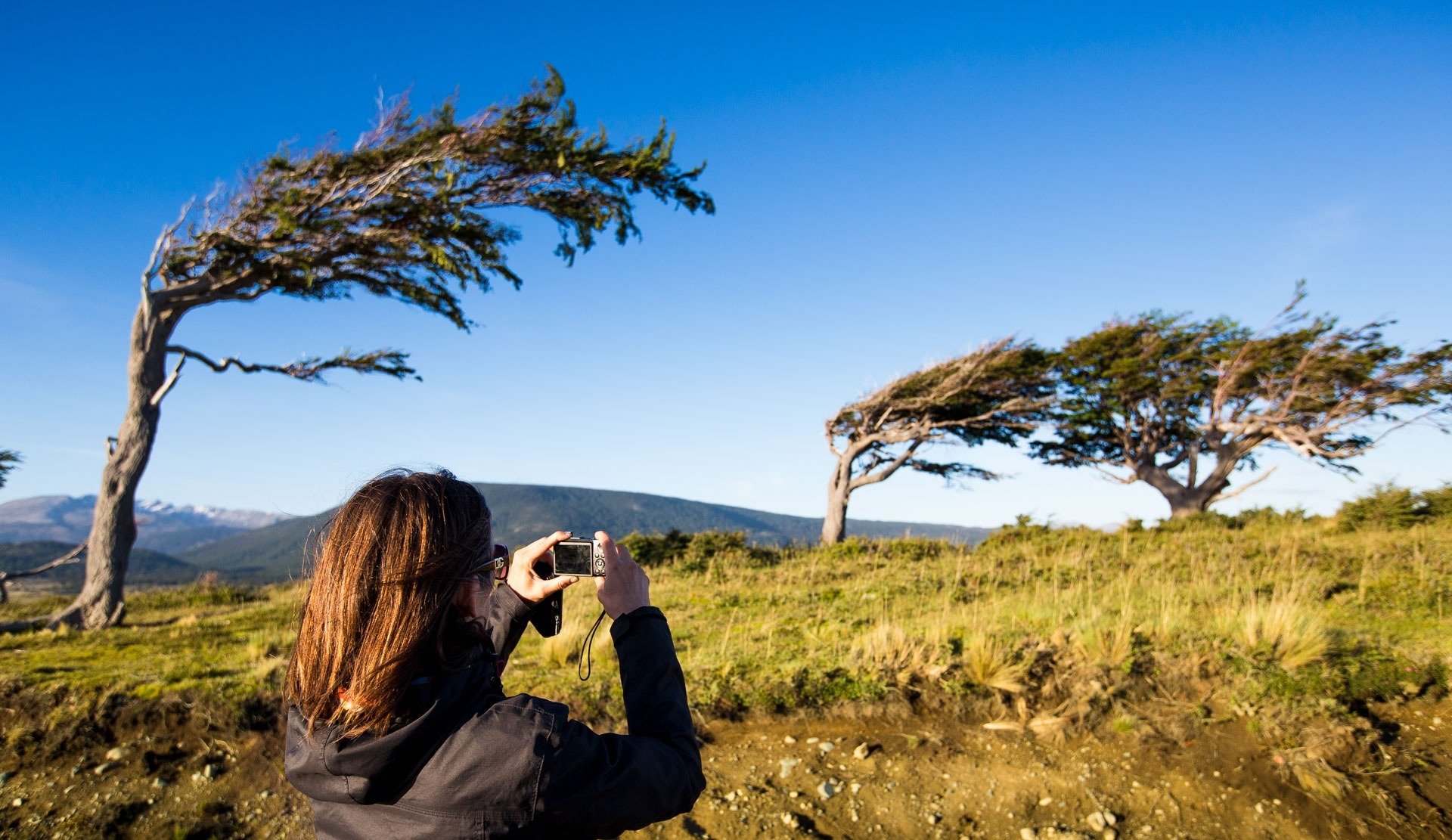 Windig ist es fast immer in Patagonien. Quelle: Viventura