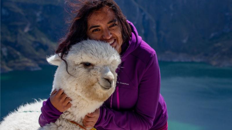 """Einmal Knuddeln mit Alpakas: Davon träumen wohl viele Menschen, wenn sie das Wort """"Alpaka"""" hören! Dabei waren Alpakas nicht immer domestiziert..."""